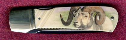 Bighorn Sheep on Ken Steigerwalt Ivory Folder